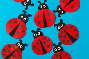Ladybird craft