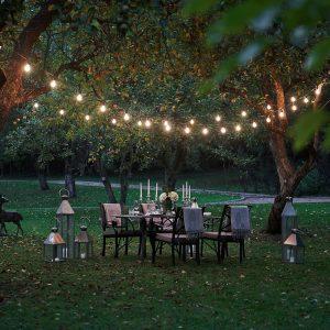 string lights in a garden