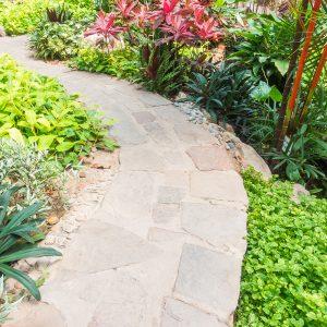 path way to walk people inside a garden